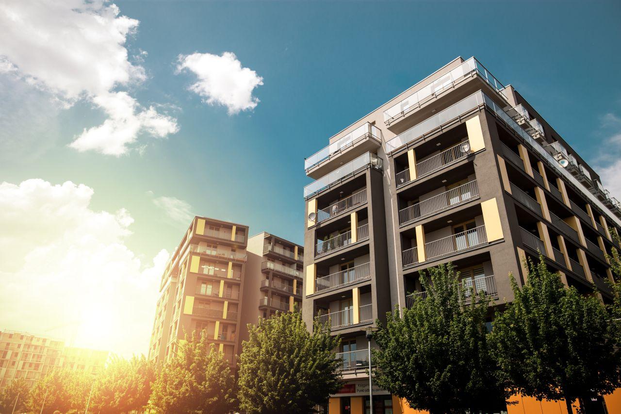 אז מה זה בעצם האגודה לתרבות הדיור?